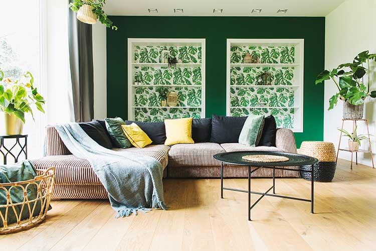 Gesünder leben mit den richtigen Zimmerpflanzen