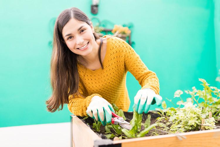 Hochbeete – Gartenarbeit ja, bücken nein!